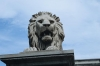 Lion statue on Chain Bridge Budapest Hungary