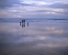 A couple reflected in wet sand as they walk dogs on Bamburgh Beach in Northumberland. England